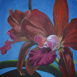 Oil Painting—Orchids